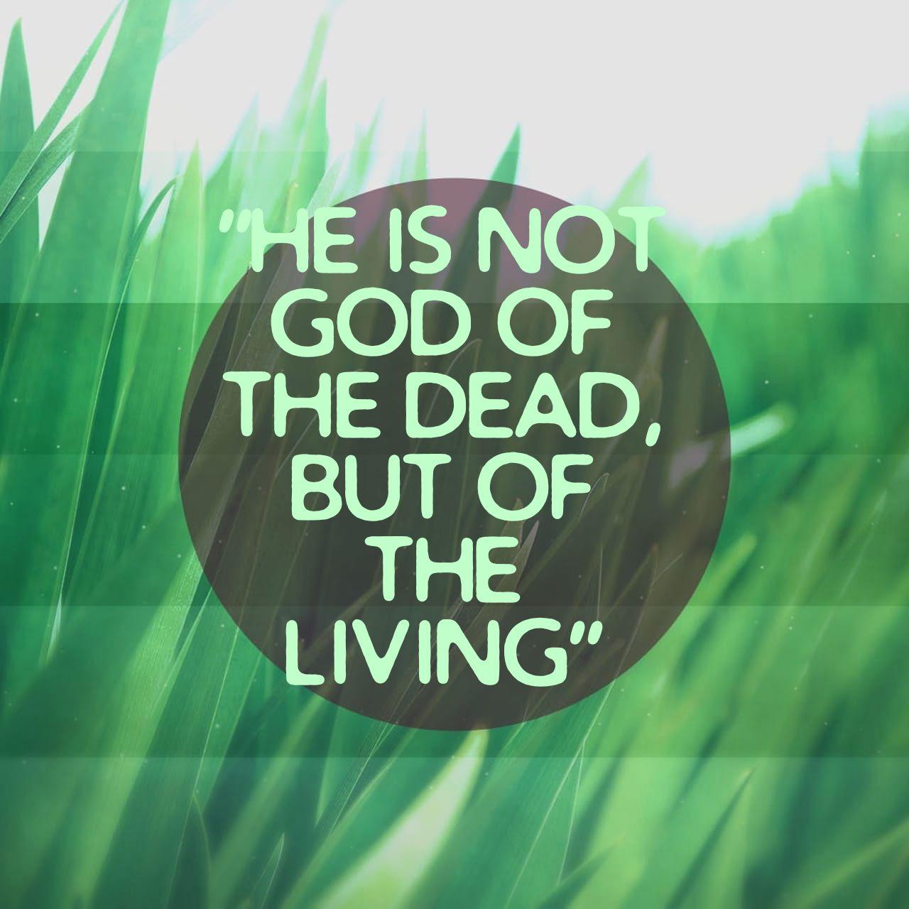 Daily Bible Reading: Luke 20:27-47